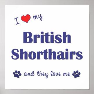 I Love My British Shorthairs (Multiple Cats) Print