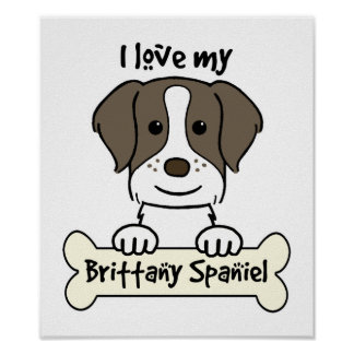 I Love My Brittany Spaniel Poster
