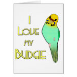 I Love My Budgie Cards