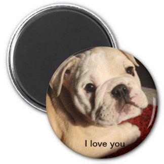 I love my Bulldog Puppy 2 Inch Round Magnet