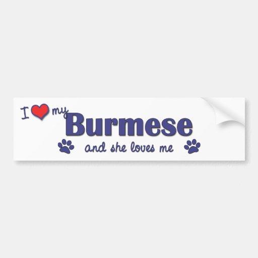 I Love My Burmese (Female Cat) Bumper Sticker