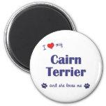 I Love My Cairn Terrier (Female Dog) Magnet