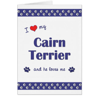 I Love My Cairn Terrier (Male Dog) Card