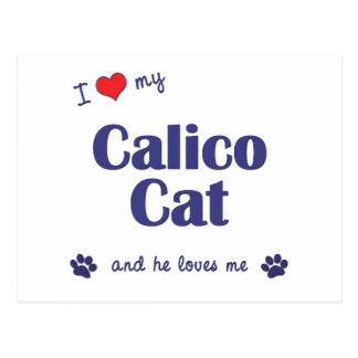 I Love My Calico Cat (Male Cat) Postcard