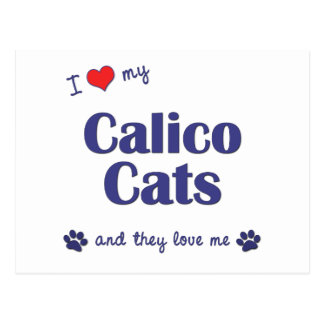 I Love My Calico Cats (Multiple Cats) Postcard