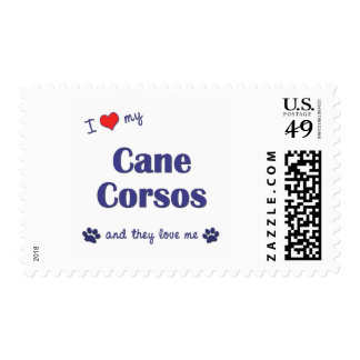 I Love My Cane Corsos (Multiple Dogs) Stamp