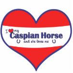 I Love My Caspian Horse (Female Horse) Cut Outs