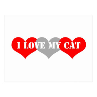 I love my cat postcard