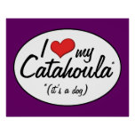I Love My Catahoula (It's a Dog) Poster