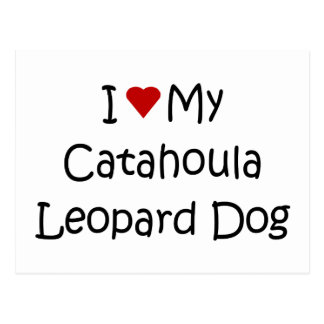 I Love My Catahoula Leopard Dog Lover Gifts Postcard