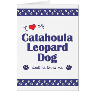 I Love My Catahoula Leopard Dog (Male Dog) Stationery Note Card