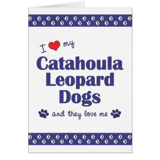 I Love My Catahoula Leopard Dogs (Multiple Dogs) Stationery Note Card