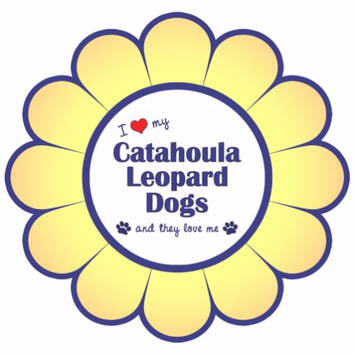 I Love My Catahoula Leopard Dogs (Multiple Dogs) Photo Sculpture Ornament