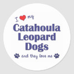 I Love My Catahoula Leopard Dogs (Multiple Dogs) Classic Round Sticker
