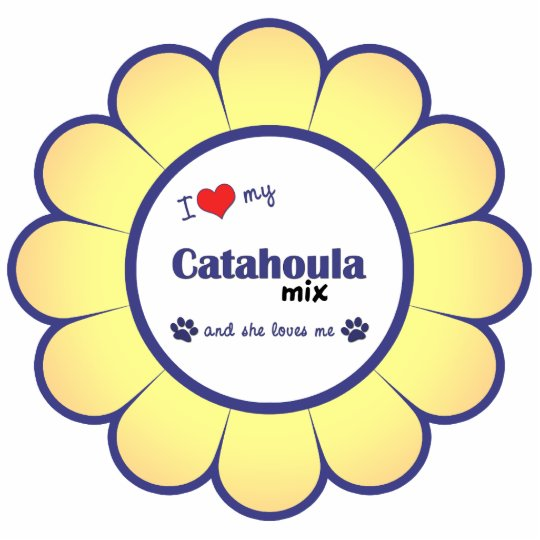 I Love My Catahoula Mix (Female Dog) Statuette