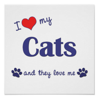 I Love My Cats (Multiple Cats) Poster