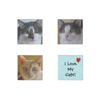 I Love My Cats! Stone Magnet