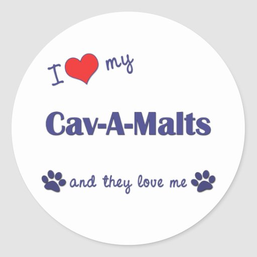 I Love My Cav-A-Malts (Multiple Dogs) Stickers