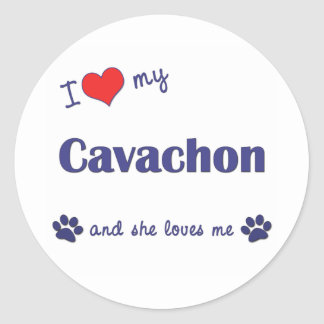 I Love My Cavachon (Female Dog) Classic Round Sticker