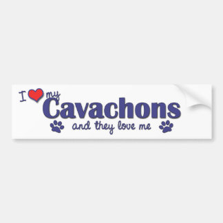 I Love My Cavachons (Multiple Dogs) Bumper Sticker