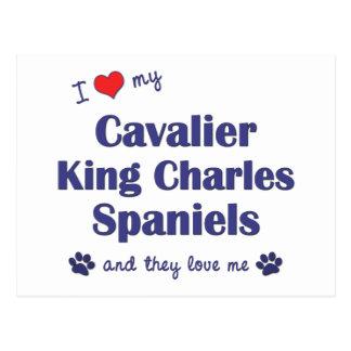 I Love My Cavalier King Charles (Multiple Dogs) Postcard
