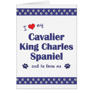 I Love My Cavalier King Charles Spaniel (Male Dog) Greeting Card