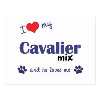 I Love My Cavalier Mix (Male Dog) Postcard