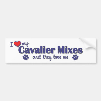 I Love My Cavalier Mixes (Multiple Dogs) Car Bumper Sticker