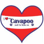 I Love My Cavapoo (Male Dog) Photo Cut Out