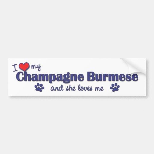 I Love My Champagne Burmese (Female Cat) Bumper Stickers