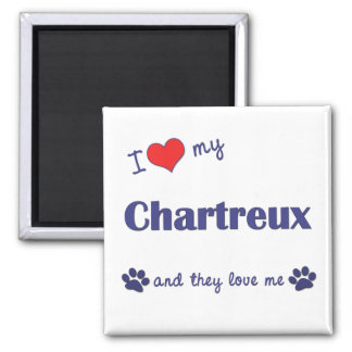 I Love My Chartreux (Multiple Cats) 2 Inch Square Magnet