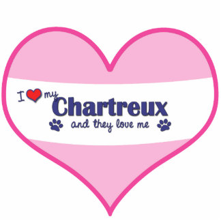 I Love My Chartreux (Multiple Cats) Photo Sculpture Ornament
