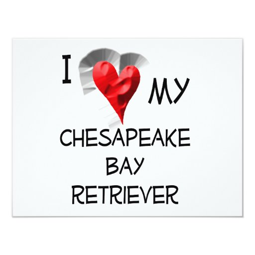 "I Love My Chesapeake Bay Retriever 4.25"" X 5.5"" Invitation Card"