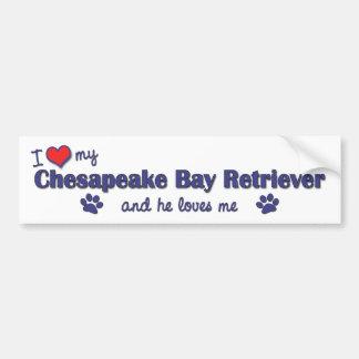 I Love My Chesapeake Bay Retriever (Male Dog) Bumper Sticker