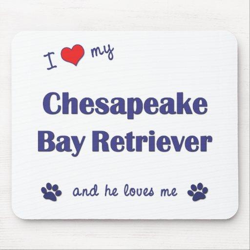 I Love My Chesapeake Bay Retriever (Male Dog) Mouse Pad