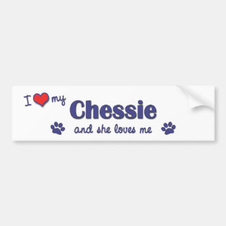 I Love My Chessie (Female Dog) Bumper Sticker
