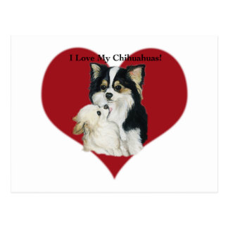 """"""" I Love My Chhihuahua"""" Dog Art Postcard"""