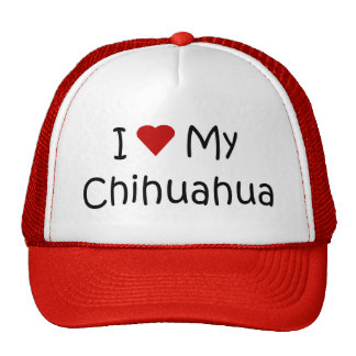 I Love My Chihuahua Dog Breed Lover Gifts Trucker Hat