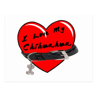 I Love My Chihuahua Heart with Dog Collar Postcard