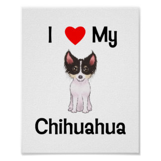 I Love My Chihuahua (picture) Poster