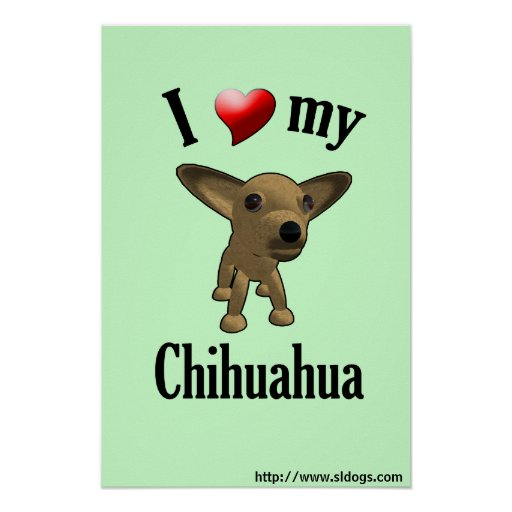 I Love My Chihuahua Poster