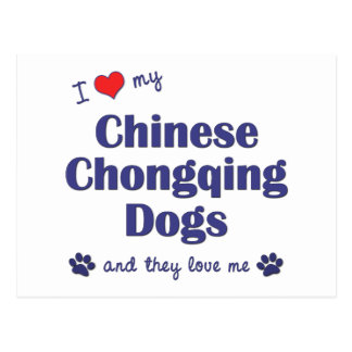I Love My Chinese Chongqing Dogs (Multiple Dogs) Postcard