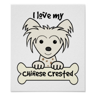 I Love My Chinese Crested Poster