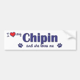 I Love My Chipin (Female Dog) Bumper Sticker