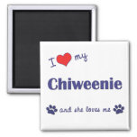 I Love My Chiweenie (Female Dog) 2 Inch Square Magnet