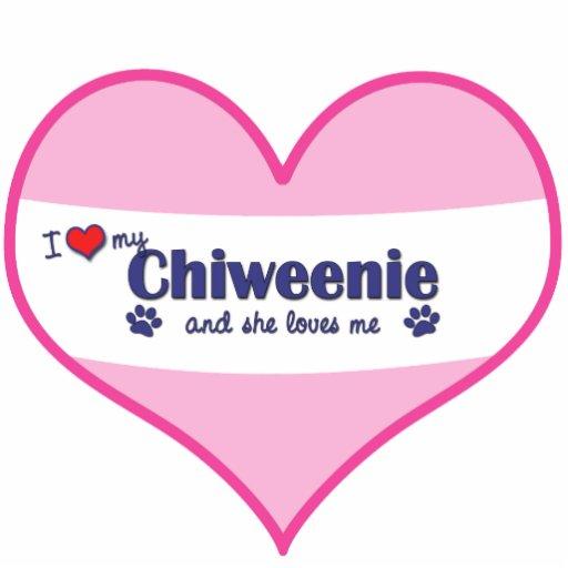 I Love My Chiweenie (Female Dog) Cut Out