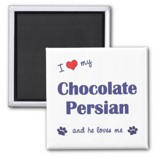 I Love My Chocolate Persian (Male Cat) 2 Inch Square Magnet