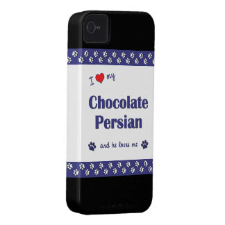 I Love My Chocolate Persian (Male Cat) iPhone 4 Cover