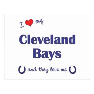 I Love My Cleveland Bays (Multiple Horses) Postcard