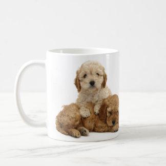 I love my cockapoo mug! coffee mug